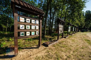Galeria Skansen
